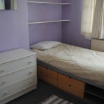 Home tuition English Immersion London