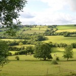 English home stay home tuition Devon