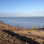 English language homestay immersion junior adult business immersion Kent South England